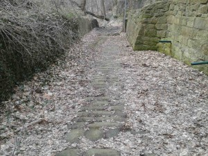 Old cobblestone walkway, a portion of old Milan Ave. before it was filled and raised.