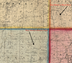 This detail view from an 1857 Township map for Lorain County shows the locations of the East and West Marshes.