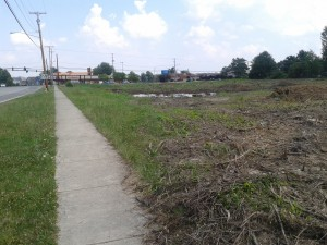 View showing near where the Clovis point was found.  Note West Ridge Road in the background.  Fowl Road's turning lane and its relatively new sidewalk now occupy a portion of where the Indian Ridge Museum was located.