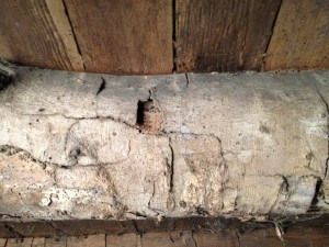 Detail view of a floor joist in the lower level of the house - most likely American beech wood.