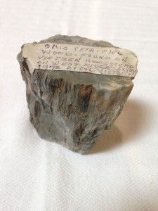 The locally-found petrified wood specimen, found at the Vietzen Homestead, now at the New Indian Ridge Museum, is complete with Col. Vietzen's hand written tag.