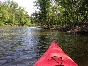 Kayaking around Bungart Island.